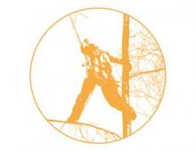 Baumpflege – Logo